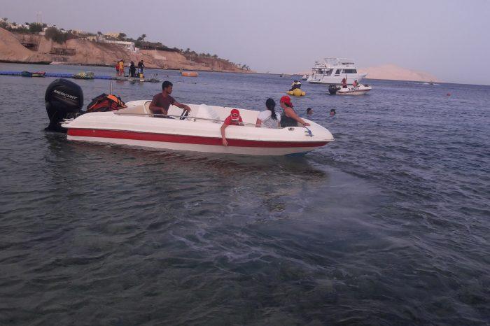 Рыбалка в Красном море Шарме